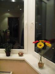 Металлопластиковые окна, двери, балконы Остер, Десна, Козелец, Даневка,