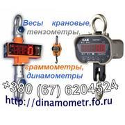 Весы крановые,  динамометры,  тензометры,  граммометры и др:+380676204524