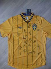Футболка с автографами футболистов сборной Швеции